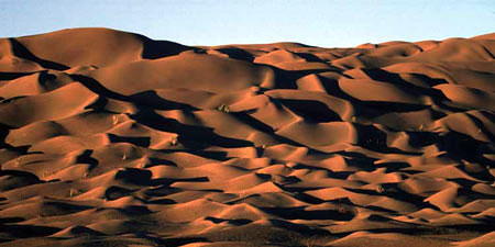 The Desert Where Humans Speak With The STars When They Are Not Too Blind, almost everyday!