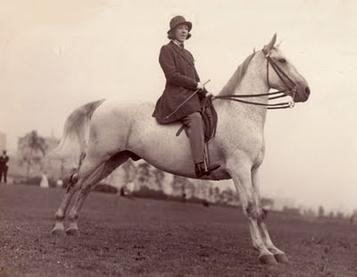 HAZEL KING #4 1928 RINGLING BROS. CIRCUS. Valentine Douglas made a dream sometimes to have a horse and a weekend without a car. Jonathan realized this project with their personal budget and a village of so nice people located in the Prague Area.
