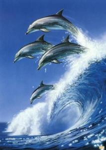 Dolphins are The symbol of Fred Vidal, PhD (Mike Fuller) Campaign In California For The Senate Of The United States, November 2, In Exactly 40 Days NOW!!!!