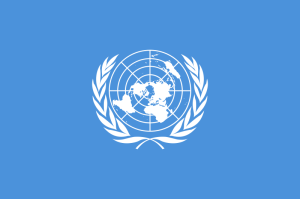 The United Nations are the right organization to produce an AUDIT about the Web's GOALS. I'm gonna start it on my blog and propose them to continue.