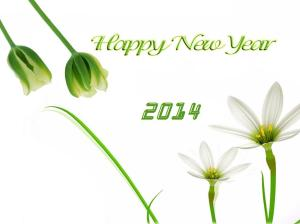 happy-new-year-wallpapers7-20144